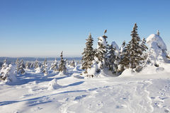 Winter landscape. Snow covered forest. Mountain range Zuratkul Stock Image