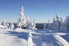 Winter landscape. Snow covered forest. Mountain range Zuratkul Royalty Free Stock Photo