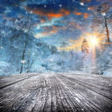 Winter landscape with snow covered forest Royalty Free Stock Photos