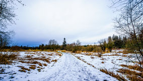 Winter landscape with snow covered path and grass fields in Campbell Valley Park Royalty Free Stock Photography