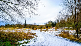 Winter landscape with snow covered path and grass fields in Campbell Valley Park Royalty Free Stock Image