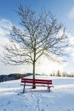 Winter landscape with snow covered red bench Stock Image