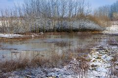 Winter landscape with a snow-covered river bank,. Trees covered with hoar-frost, and fog over the river Royalty Free Stock Image