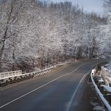 Winter landscape with a snow-covered river bank,. Trees covered with hoar-frost, and fog over the river Stock Images