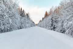Winter landscape snow-covered road Royalty Free Stock Photo
