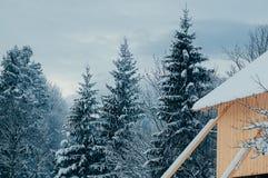 Winter rural landscape cloudy sky stock photo