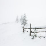 Winter landscape with snow covered trees Royalty Free Stock Photos