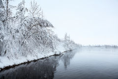 Winter landscape with snow-covered trees on lake Royalty Free Stock Images