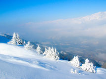 Winter landscape with snow-covered trees Stock Image