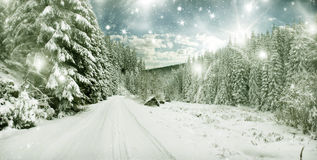 Winter landscape - snow covered trees and sky with stars Stock Photography