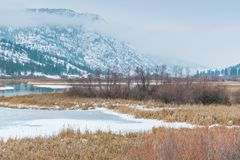 Winter landscape of snow covered wetland habitat with mountains and fog royalty free stock photo
