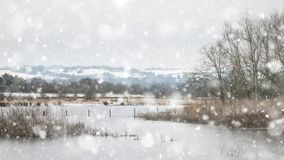Winter landscape with snow falling and covering everything in En. Winter landscape with snow falling and covering ground and foliage in English countryside Stock Image