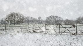 Winter landscape with snow falling and covering everything in En. Winter landscape with snow falling and covering ground and foliage in English countryside Stock Photography