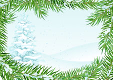 Winter landscape with snow fir. Fir branch under snow frame. Vector season nature illustration Royalty Free Stock Image
