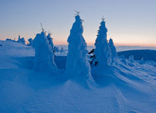 Winter landscape of snow ghosts - Harghita madaras. Picture taken at of snow covered trees on the top of the Harghita Madaras Transylvania, Romania stock photo