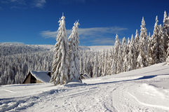 Winter landscape with snow in mountains Royalty Free Stock Photo