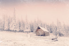 Winter landscape with snow in mountains Carpathians, Ukraine. Vi royalty free stock photo