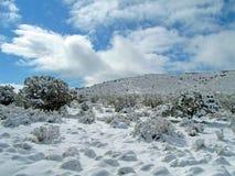 Winter landscape,snow nature environment, Stock Photos