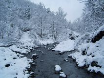 winter landscape with snow Stock Image