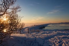 Winter landscape with snow, ocean, sea, blue sky, road, sunshine, ice. Royalty Free Stock Image