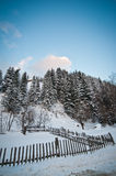 Winter landscape with snowed trees, road and wooden fence. Hill covered by snow at countryside. Cold winter day with blue sky. Traditional Carpathian mountains Royalty Free Stock Images