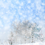 Winter landscape with snowfall Royalty Free Stock Images