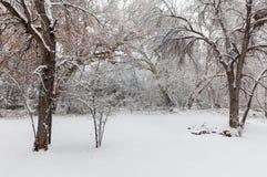 Winter Landscape in Snowstorm Stock Photos