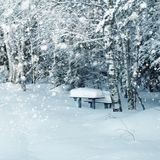 Winter landscape, snowy bench in park Royalty Free Stock Photos
