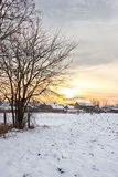 Winter landscape with snowy countryside village next to snow cor Stock Photography