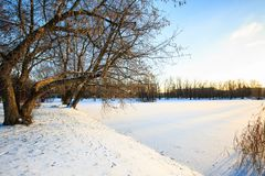 Winter landscape with snowy field, leafless trees and frozen lake in city park. Sunset in the wood. City park royalty free stock image