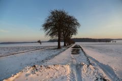 Winter landscape. Winter landscape with snowy fields.  royalty free stock photo