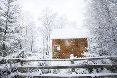 Winter landscape with snowy fir trees and mountain cottage Stock Images