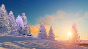 Winter landscape with snowy firs at sunset. Winter landscape fir tree forest covered with snow under scenic sunset or sunrise sky. 3D illustration was done from vector illustration