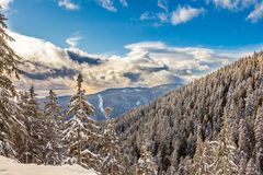 Winter landscape with snowy forest high in the mountains in a sunny day. Sunny winter day, forest treetops covered with snow, bright and blue skyline with clouds Stock Photos