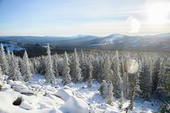 Winter landscape. Snowy forest at mountains, Russia, Ural. royalty free stock image