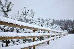 Winter landscape with snowy forest and a wooden fence. Landscape with snowy forest and a wooden fence stock photography