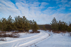 Winter landscape. Landscape with snowy road in the winter through a pine forest stock image