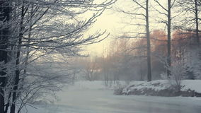 Winter landscape. Snowy scene in winter forest with fog over frozen river stock footage