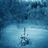 Winter landscape with christmas tree stock images