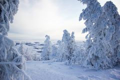 Winter landscape, snowy Ural mountains in cloudy day, Russia royalty free stock photography