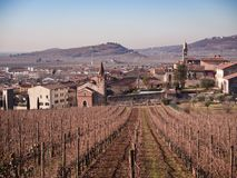 Winter landscape of Soave Italy surrounded by vineyards. Stock Photography