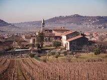 Winter landscape of Soave Italy surrounded by vineyards. Royalty Free Stock Photography