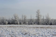 Winter Landscape. In Southern Quebec stock photography