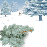 Winter landscape with spruce branches, trees and deer. Royalty Free Stock Photography