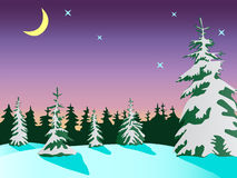 Winter landscape with spruce Royalty Free Stock Images