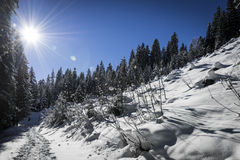 Winter landscape with steps Royalty Free Stock Photography