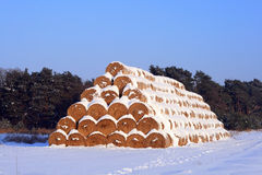 Winter landscape with straw bales Royalty Free Stock Image