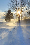 Winter landscape in strong wind Royalty Free Stock Photos