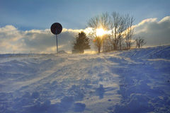 Winter landscape in strong wind Stock Photography