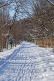 Winter landscape in the suburbs of Kazan royalty free stock images